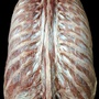 Photo - Deep muscles of back - layer 6